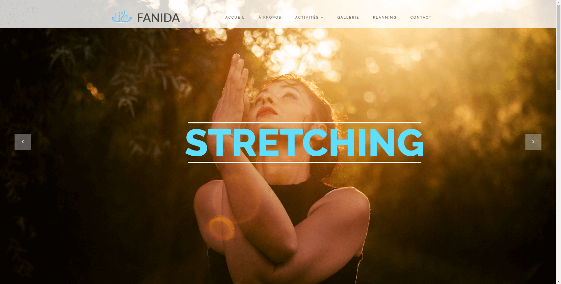 fanidab-website